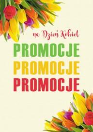 Plakat (PG102) Na Dzień Kobiet Promocje