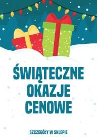 Plakat (PG285) Świąteczne okazje cenowe