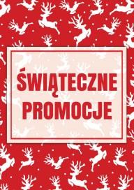 Plakat (PG288) Świąteczne promocje