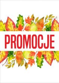 Plakat (PG389) Promocje