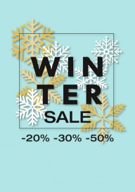 Plakat (PG406) Winter sale
