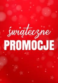 Plakat (PG420) Świąteczne promocje