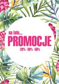 Plakat (PG489) Promocje na lato