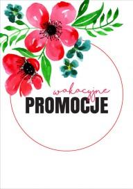 Plakat (PG491) Wakacyjne promocje